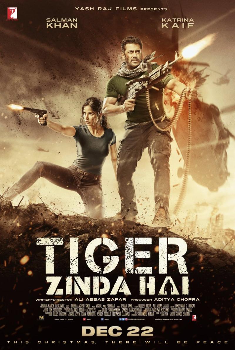 Tigerzindahai-3